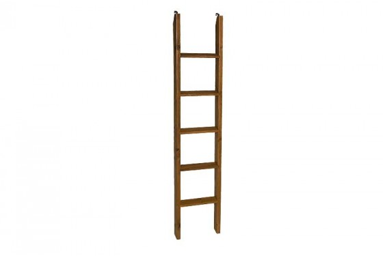 Young Pioneer Student Loft/Bunk Ladder Media Image 1